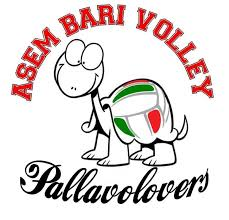 Logo Pallavolovers